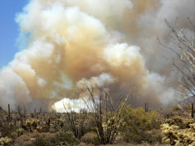 The 257 Fire Southeast of Superior, Arizona